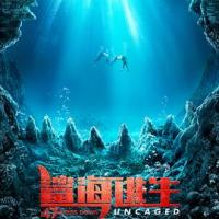 鲨海逃生 47 Meters Down: Uncaged (2020)